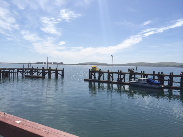 View from Lucas Wharf  Restaurant and Bar at Bodega Bay (Katherine Hart, 2015)